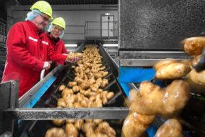 CO2-besparing van ruim 31.000 kg bij Lamb Weston / Meijer