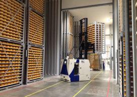 FrieslandCampina zet in op AGV's