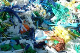 Biologisch afbreekbare plastics geen oplossing voor plasticsoep