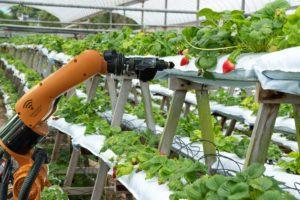 Autonome robot in maakbedrijf nog een stap te ver?